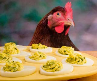 These deviled eggs would make Mom proud